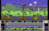Street Cat Commodore 64 You need to jump over the water here