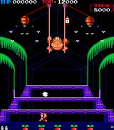 Donkey Kong 3 Arcade First level