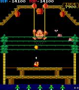 Donkey Kong 3 Arcade Second level