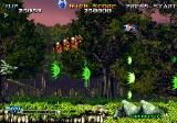 Blazing Star Arcade In forest
