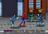 Spider-Man: The Videogame Arcade Beat 'em up.