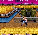 Double Dragon II: The Revenge Arcade Farm