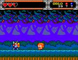Wonder Boy in Monster World SEGA Master System The Woods