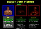 Pit-Fighter Arcade Fighter selection