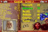 The Lord of the Rings: The Return of the King Game Boy Advance The stats screen shows many stats for your character... be sure to come here often so you can increase stats when you level up