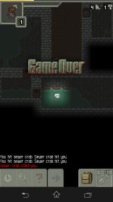 Pixel Dungeon Android I gave it my best shot!