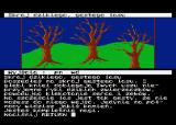 Wyspa Atari 8-bit Edge of the wild forest