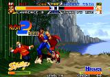 Real Bout Fatal Fury Special Arcade Laurence is matador
