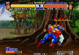 Real Bout Fatal Fury Special Arcade Punch in bob