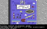 Street Sports Football Commodore 64 Play book - make your own custom plays.