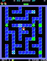 Pengo Arcade The maze of ice.