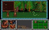 Dragonflight DOS Fighting against a snake in a forest