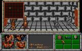Dragonflight DOS Fighting skeletons in a dungeon