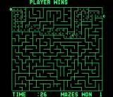 Amazing Maze Arcade The right path is shown after a game