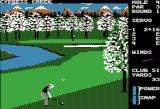 World Class Leader Board Apple II Hitting from the rough