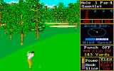 World Class Leader Board Amiga Some trees in the way!