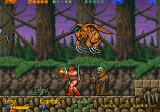 Rastan Saga II Arcade Flying.. something