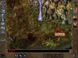 Baldur's Gate II: Shadows of Amn Windows You ventured to the Druid's Grove. All you get are spells cast on you and some weird mushroom enemies...