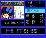 Bishōjo shashinkan Special: The Double Vision MSX Let's open the aperture a little