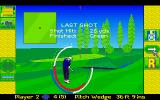 David Leadbetter's Greens Amiga There is a brief summary at the end of each shot