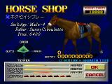 Gallop Racer PlayStation This is a horse that is up for sale. Nearly all the relevant statistics are available here, the square gives the player access to a graph  of something called Growth