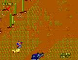 Enduro Racer SEGA Master System Grass slows you down