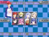 Fate Stay Night Racing Windows Character selection