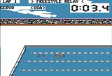 Summer Games Apple II One of the swimming events