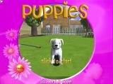 Puppies Windows The game's start screen. 
