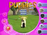 Puppies Windows A puppy has been selected and named. The maximum length of name is twelve characters.