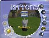 Kittens Windows A cat has been selected. The name is limited to just twelve characters.