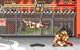 Street Fighter II Amiga Zangief drags and drops Ryu.