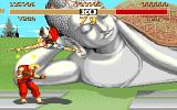 Street Fighter II Amiga ... and flies.