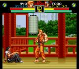 Art of Fighting SNES Everyone must charge their Spirit meter [second bar] to be able to perform special moves.