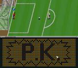 Zico Soccer SNES Penalty shoot-out. Germany vs... don't remember the team.