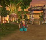 "Dragon Quest VIII: Journey of the Cursed King PlayStation 2 Southern-most island with an obligatory ""tribal"" village"