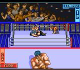 Hammerlock Wrestling SNES The audience is excited.