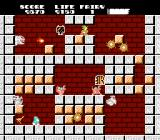Solomon's Key NES The grey blocks can't be destroyed