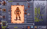 Dark Sun: Shattered Lands DOS Character attribute and inventory screen. It's all very intuitive. This is my female human thief character...