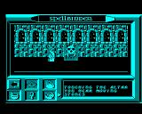Spellbinder BBC Micro Touching an altar