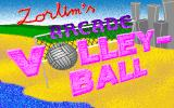 Zorlim's Arcade Volleyball DOS Title screen