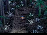 Legend of Legaia PlayStation Dark forest dungeon