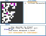 Dungeon of Nadroj Amiga If you flee from a fight, you may be forced to drop something in your inventory