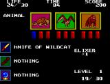 Danan the Jungle Fighter SEGA Master System Danan's inventory