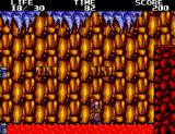 Danan the Jungle Fighter SEGA Master System You know, steppng on lava can be hazardous to your health