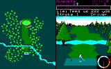 World Tour Golf PC-98 At the start of the 4th hole on the Augusta course