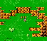 Bloody Warriors: Shan Go no Gyakushū NES World map