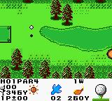 Hole in One Golf Game Boy Color There the ball goes