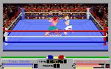 4-D Boxing DOS Standard camera with ring textures