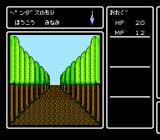 Deep Dungeon IV: Kuro no Yōjutsushi NES Wilderness